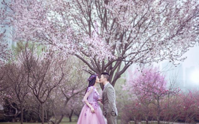 【维罗纳婚纱摄影】丨樱花季