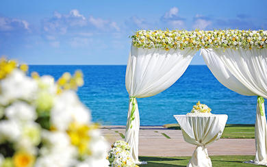 「草坪婚礼」亚龙湾万豪酒店 梦中的婚礼