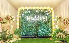 【晨枫婚礼策划】《绿光森林》