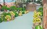斑马婚礼记·田园森林