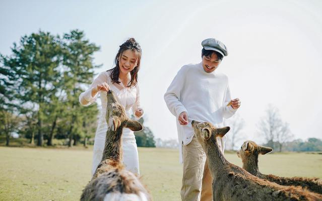 【60张精修】小小奈良——和小鹿的亲密旅拍