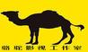 骆驼影视工作室