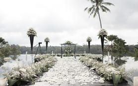 巴厘岛蝴蝶水上婚礼+一日高清