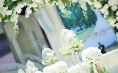 户外浪漫清新的白绿系庄园婚礼