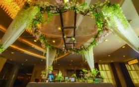 【玫瑰婚坊私人定制】多肉植物主题婚礼