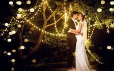 【婚礼纪专享】 夜景  纯色  纪实  街拍
