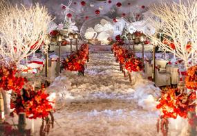 【维西婚礼】#水晶球童话婚礼#全程婚礼一对一服务