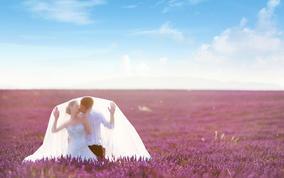 婚游记 7月法国普罗旺斯 婚纱新开户送彩金网站大全——薰衣草花海