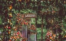 【盛夏光年】户外复古草坪婚礼