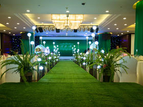 森系主题婚礼《绿光森林》