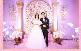 黑色经典款青果领  以粉色为主的婚礼