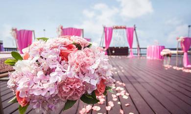 粉色临海露台婚礼