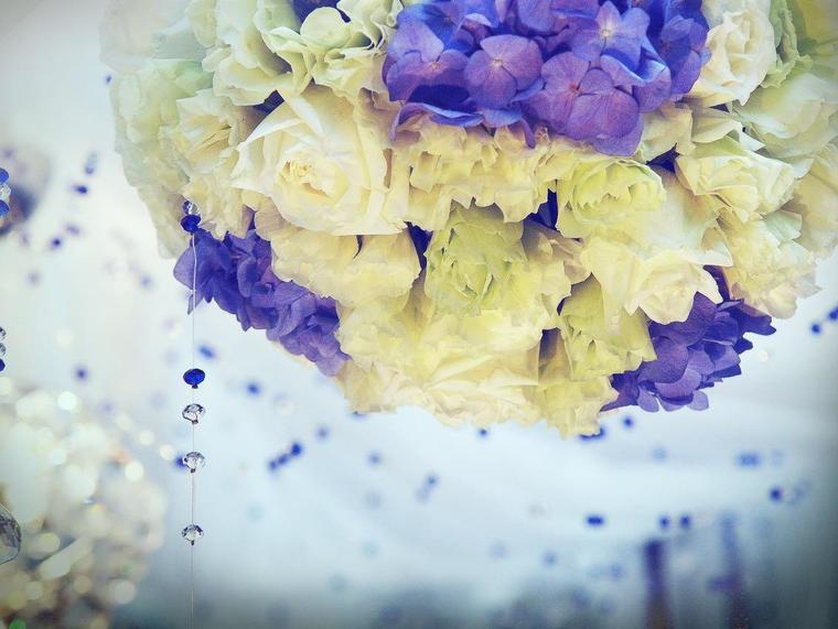 鲜花主题婚礼-COLOR LOVE(包四大金刚)