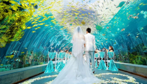25000元【一价全包】三亚梦幻海底婚礼