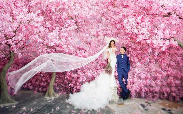 巴中台北新娘婚纱摄影-【花海主题】