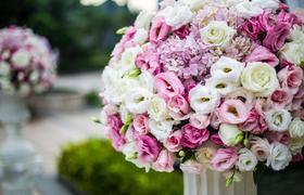 造梦者婚礼——粉色户外梦幻婚礼