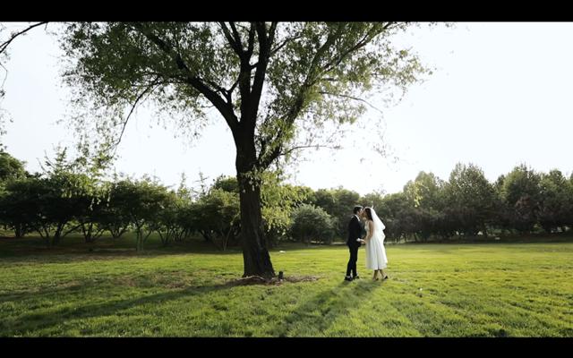 多机位 创始人拍摄 最美的户外婚礼