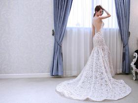 【NSNBRIDAL娜莎诺】新款蕾丝婚纱