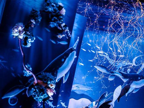 西溪宾馆 海洋系 蓝白色婚礼 鲸鱼元素