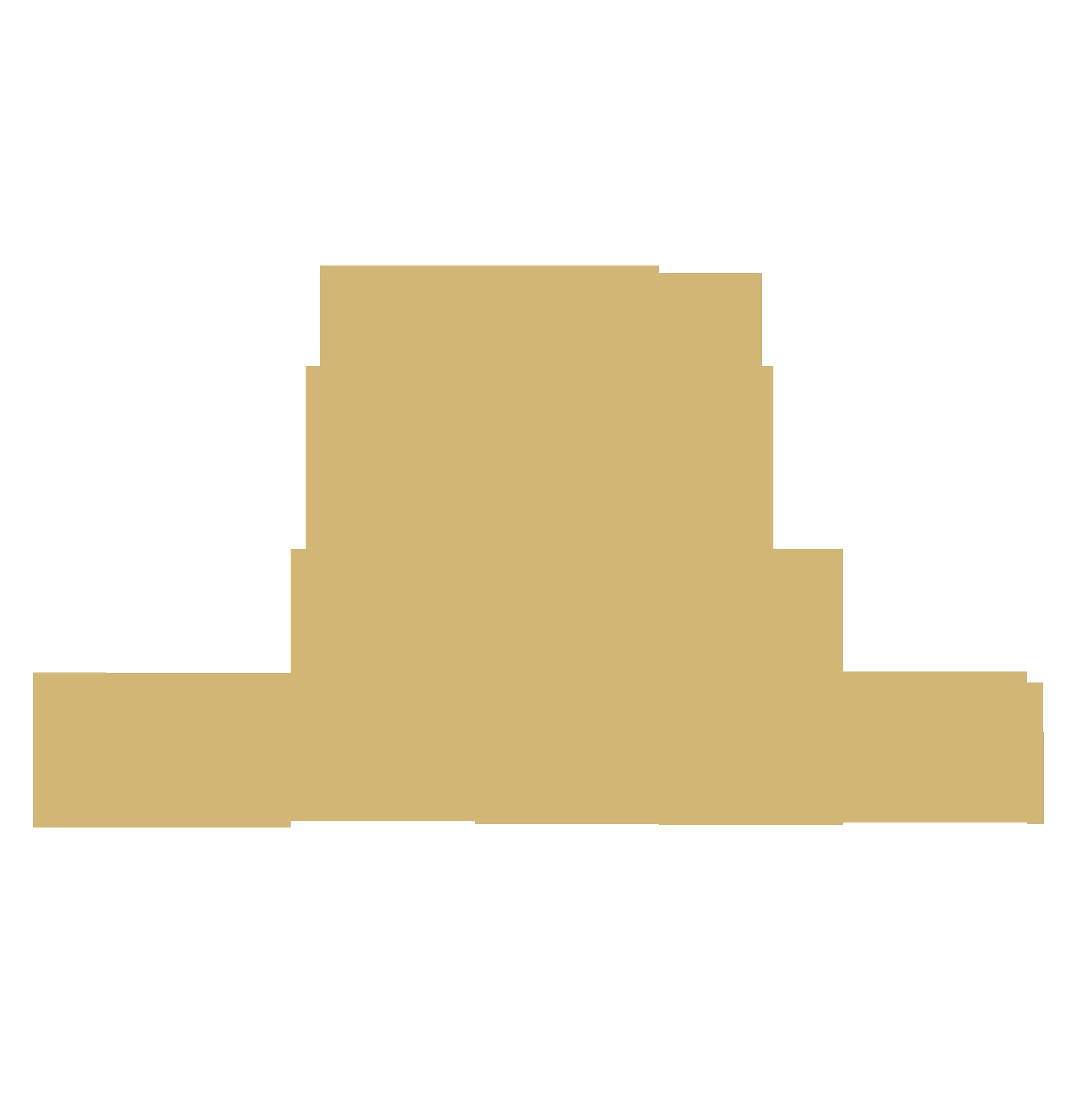 中国金银珠宝钻戒定制