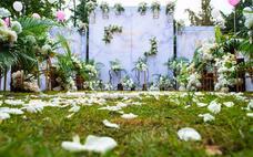 同心缘- 清新户外草坪婚礼