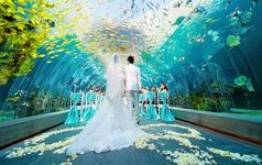 【珮珣婚礼】三亚海底世界婚礼