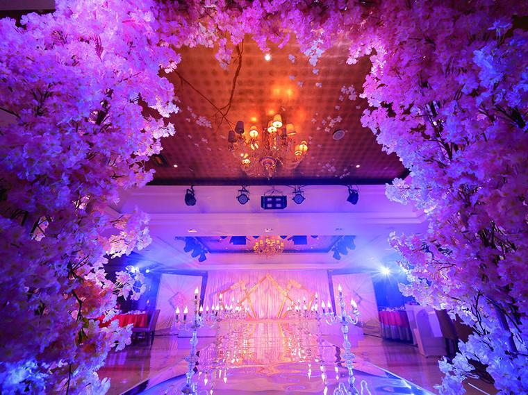 艾丽婚礼大鸭梨酒店紫色梦幻樱花韩式婚礼