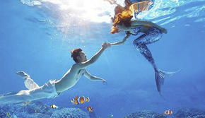 免费精修111张+水下美人鱼+送下载app送62元彩金包邮酒店接机
