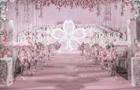粉色浪漫/关于少年的梦魇