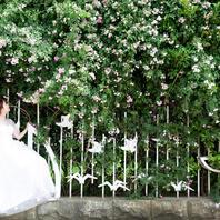 【私人定制】婚纱照系列 5服装5造型