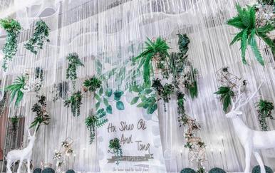 萤光之森--清新森系 idea wedding