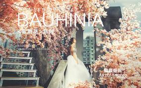 《紫荆花》香港独家定制场景