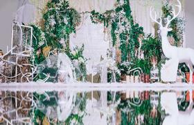 《绿野仙踪》森林系主题婚礼