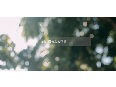 Bestime丨 三亚海岛 定制旅行微电影
