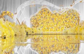 明黄音乐主题婚礼 《爱乐之城》