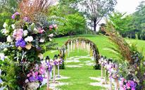 森系户外婚礼——婚景如画