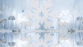 【超值特惠款】雪落山林——冰雪羽艺婚礼