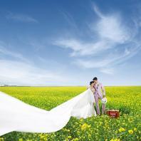 【油菜花海】青海湖丨草原丨沙漠+5D美学馆内景