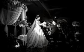 《爱若新生》一场关于独角兽的魔幻婚礼