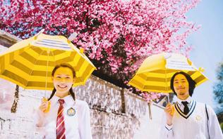 【大理站】情人树+浪漫洱海+三天两晚客栈住宿