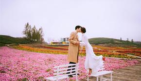 【春季花海】我与春天有个约会,抢新推荐