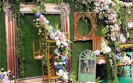 绿粉庭院户外婚礼——星星的爱