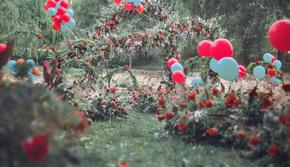 【花海阁】炫彩浪漫户外草坪婚礼鲜花套系