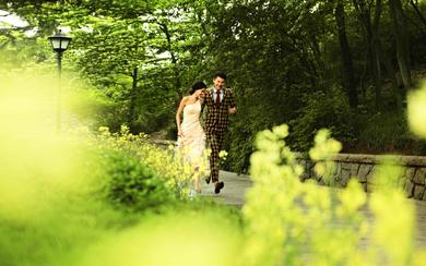 青岛天美婚纱摄影---绿植公园篇