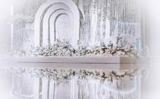 《雅媛》纯洁的爱 银色白色系列