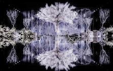 【童话浪漫】爱的永生树|紫色