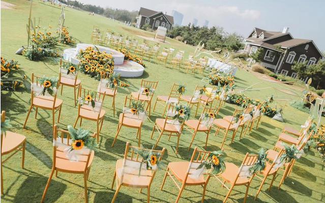 婚庆公园明媚欢快的向日葵婚礼