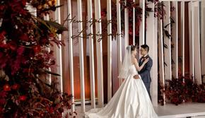 【wedding境地婚礼】枫映红