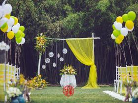户外婚礼   柠檬黄·小清新