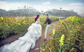 【AMOR】婚纱摄影之艾菲